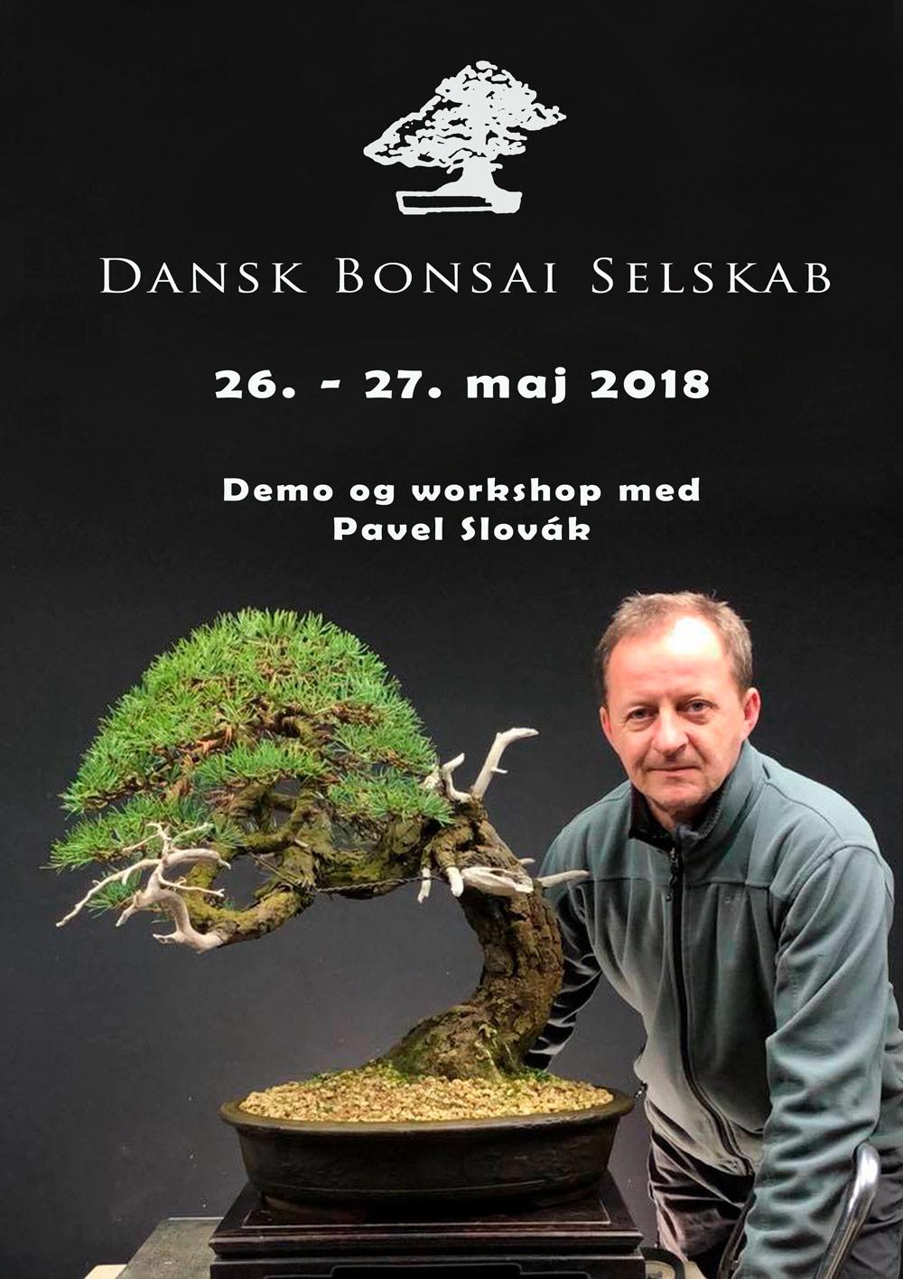 DBS-plakat-2018
